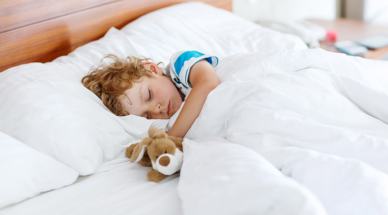 Child Sleeping with Stuffed Animal Image
