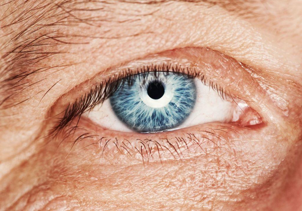 Human Eye Image